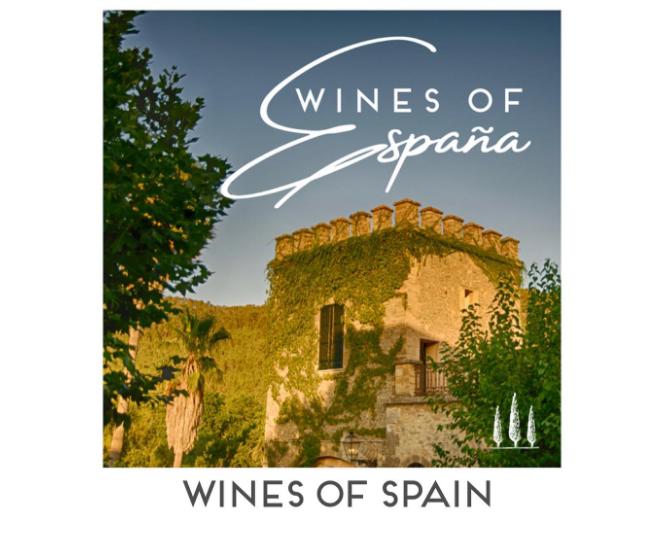 terra vite wines of spain